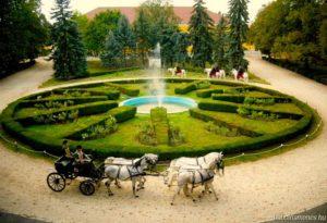 Babolna, Hochburg der Vollblut-Araber